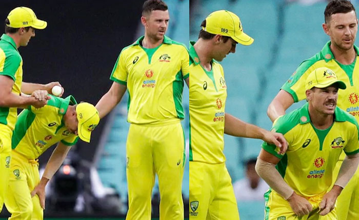 David Warner got Injured in his Groin and Left from the ODI and T20 Series