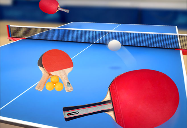Table Tennis Guinness World Record Made by 14 Year Old P.Harikrishna